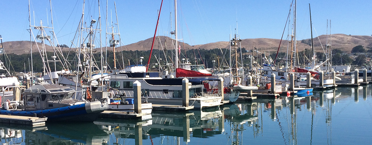 Bodega Bay Marina with Boats   Fishermans Chapel by the bay